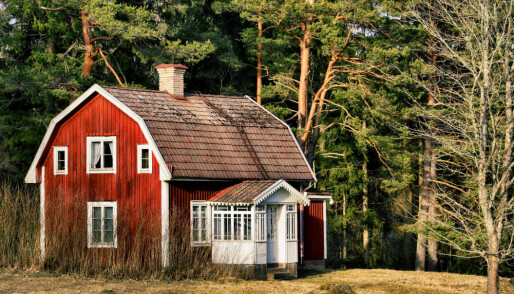 Why do young people long for a little house in the woods?