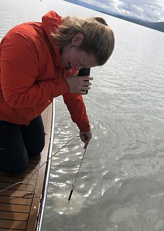 Niva-forsker Helene Frigstad bruker en hvit Secchi-skive festet til et tau for å måle hvor mørkt det er i vannet.
