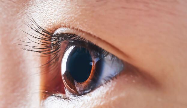Pupillen er det sorte hullet i midten av øyet.