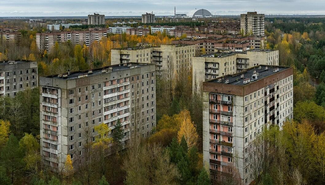 Her har ingen bodd siden april 1986. Skogen er i ferd med å ta over spøkelsesbyen Pripyat. I bakgrunnen kan du se kuppelen som er bygd over ruinen etter Tsjernobyl-kraftverket. Den hindrer mer radioaktiv stråling i å komme ut.