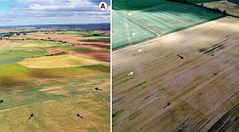 Kan ha funnet restene av mange romerske militærleire i Nord-Spania
