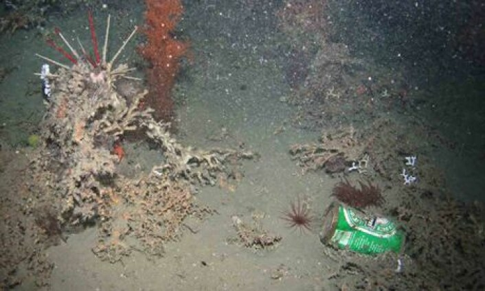 En ølboks ble funnet av en robot på 950 meter dyp. (Foto: Hermione Project/Plymouth University)