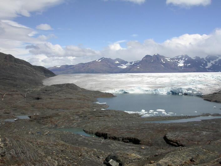 Torres del Paine, med Tyndall-isbreen i bakgrunnen. (Foto: W. Stinnesbeck)