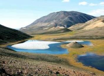 """""""Innsjø i arktisk Canada (Ellesmere Island). Perioden der dei arktiske innsjøane er isdekte, blir stadig kortare. (Foto: Bronwyn Keatley, Queen's University)"""""""