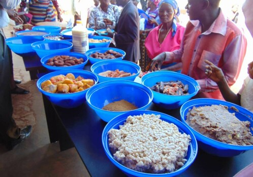 Interdisciplinary innovations boosting food security in Africa