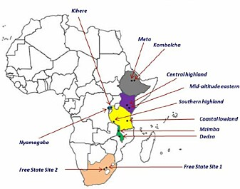 Ethiopia, Kenya, Malawi, Rwanda, Tanzania and South Africa make out the case study countries. The project operates in 24 project sites with different agro-ecological and socio-economic settings, with a focus on women and youth.