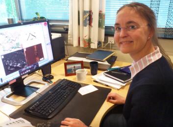 Professor Bodil Holst i nanofysikk ved Universitetet i Bergen. (Foto: Andreas R. Graven)