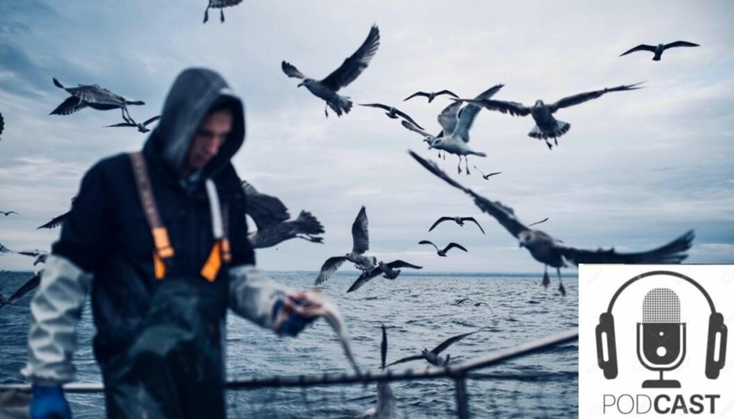 Interessene til havs er mange og tilsynelatende stikk i strid med hverandre. Blåser det opp til konflikt eller er det hele storm i et vannglass?