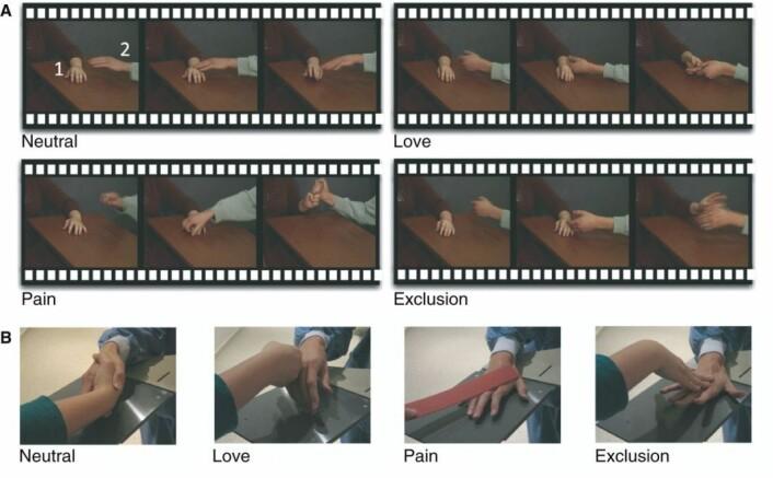 Deltagerne fikk se filmer av disse fire sekvensene, ment å vise forskjellige følelser. Bare kontrollgruppa hadde en spontan empatisk reaksjon på smerte og avvisning. (Foto: (Bilde: Meffert et al./Brain))