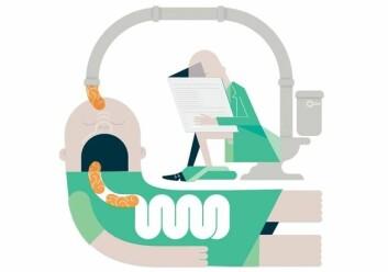 – Feses-transplantasjoner kan være ekstremt interessant. Teoretisk sett kan tarmfloraen manipuleres for å behandle en bestemt tilstand, forteller Johannes Espolin Roksund Hov. (Foto: (Illustrasjon: Ingrid Reime))
