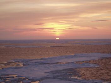 """""""Arktis - et sårbart område"""""""