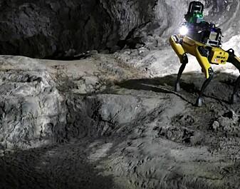 Robothunder skal utforske Mars i flokk