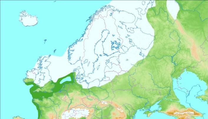 Utberedelse av isen i Europa for rundt 20 000 år siden, da isen var på sitt største.