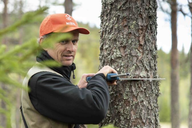 Hvert år blir skogens tilstand registrert. Den norske Landsskogtakseringen er verdens eldste landsdekkende skogtaksering. Her er Erik Sørensen i aksjon.