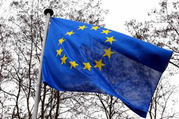 - Som medlem i Schengen står Norge med begge bena oppe i de samme problemstillingene som landene i EU gjør, forteller Ugelvik. (Illustrasjonsfoto: www.colourbox.no)