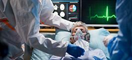 Kan tarmbakteriene være med på å bestemme hvor syk du blir av covid-19?