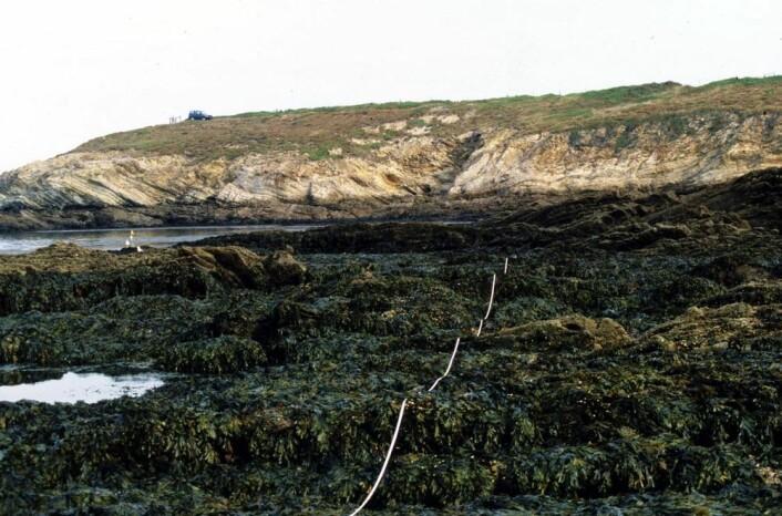 Bilde er tatt på spanskekysten i 1999. Bildet under er tatt på nøyaktig samme sted ti år senere. (Foto: Alexander Jüterbock)