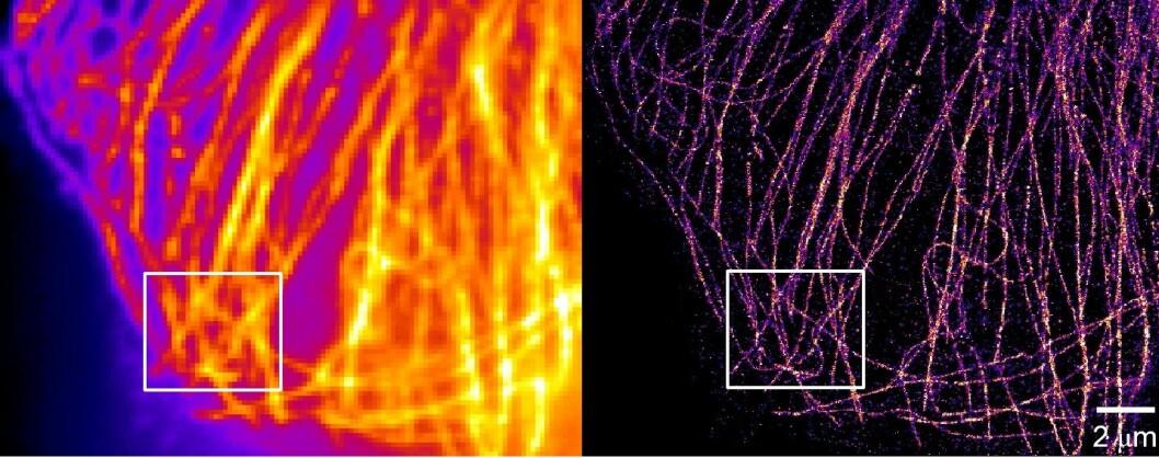 Bilde av mikrotubulus hos celler, bildet til venstre er begrenset av diffraksjon, mens bildet til høyre er superoppløst.