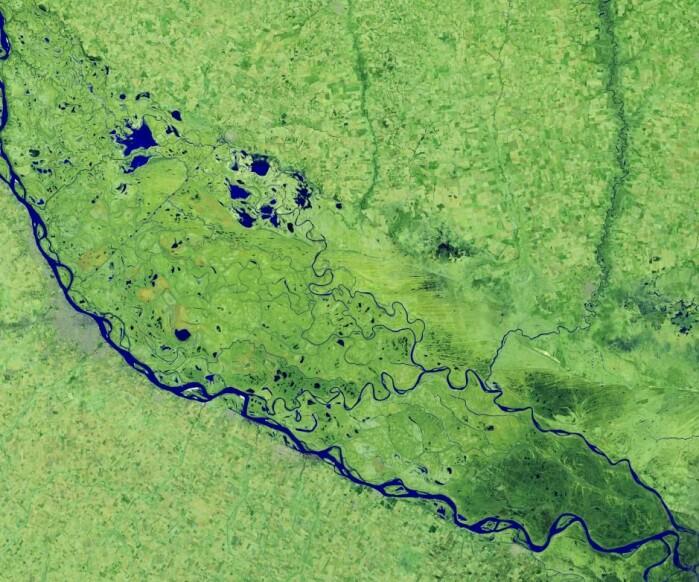 Også i Sør-Amerika gjorde 2020 seg bemerket på klimafronten. På dette bildet med kunstige farger er elven Paraná framhevet. På grunn av tørke er den på sitt laveste nivå på flere tiår. Bildet er tatt over Argentina, der den lave vannstanden har påvirket handelen langs elven, der det normalt fraktes tonnevis av korn, soya og andre varer.
