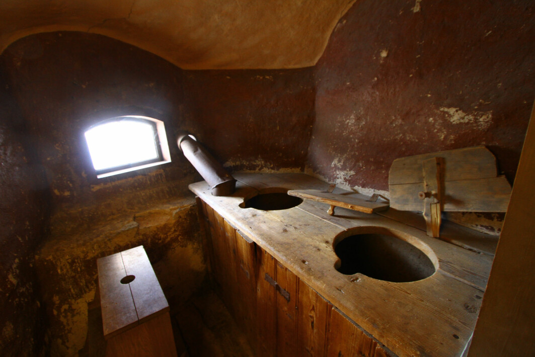 En gammel latrine er et funn i seg selv, men innholdet er mye mer interessant for vitenskapen.