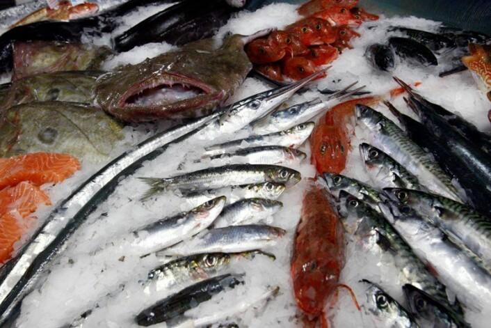 Hvor gammel ferskfisk tolererer du? (Foto: Colourbox)
