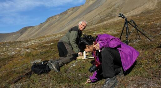 – Kystområdene i Finnmark er ikke arktiske