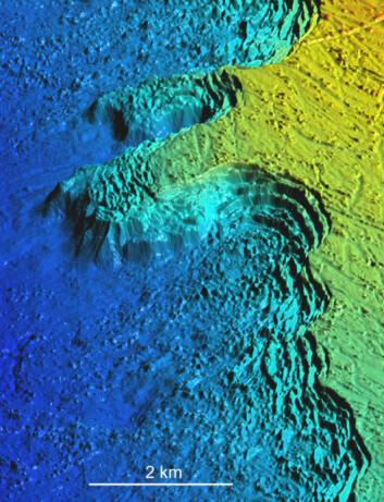 Det 40 km lange Røstrevet er verdens største kjente revkompleks med kaldtvannskoraller, i et gammelt rasområde utenfor Røst. (Foto: (Illustrasjon: Mareano/NGU))
