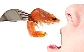 Matallergier har økt dramatisk. Nå kommer forskere med en ny teori om hvorfor.
