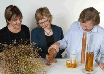 Forskerne Bente Kirkhus, Anne Kjersti Uhlen og Gjermund Vogt skal jobbe med vegetabilske oljer fra den vilvoksende planten camelina og havre. (Foto: Kjell J. Merok)