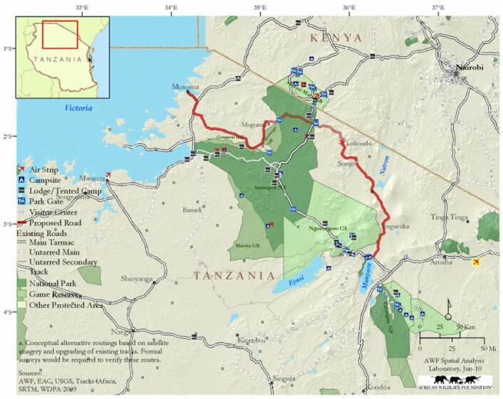 Det mørkeste grønne på dette kartet er Serengeti nasjonalpark. Her ser vi hvor det går veier gjennom parken i dag (hvite markeringer). Den planlagte veien er markert med rødt.