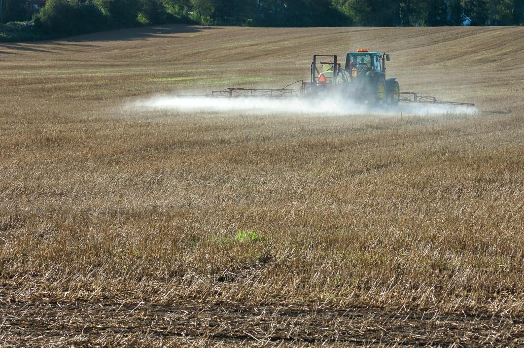 Rundt 20 prosent av de spurte korndyrkerne svarte at en dobling av prisen på plantevernmidler ikke ville få dem til å redusere bruken.