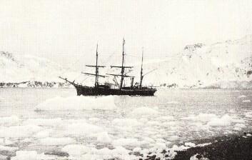 Polarskuta Antarctic ble brukt i kartleggingen av Sørpolen på starten av 1900-tallet, men gikk ned for 110 år siden. Nye oppdagelser viser at skipet likevel fortsatt kan være godt bevart. (Foto: Wikimedia Creative Commons)