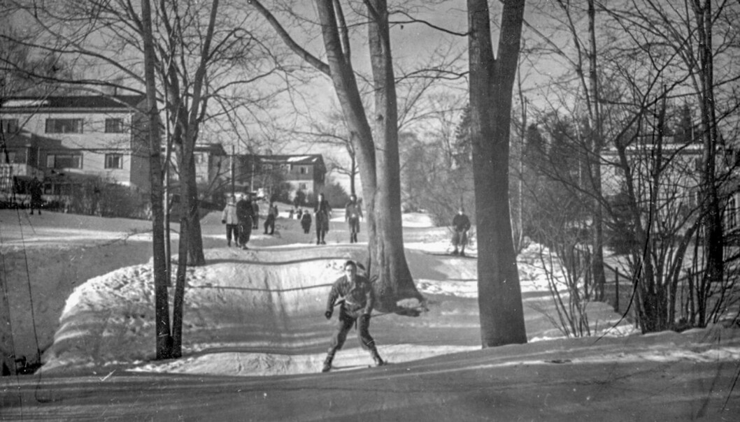 """""""Damefallet"""" in Nordberg just below Sognsvann lake is one of the """"Marka"""" trails that were planned as early as the interwar period, and is still in use. Photograph from 1950."""