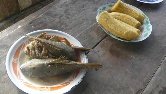 Tradisjonell mat blant shuariene i Amazonas-jungelen.