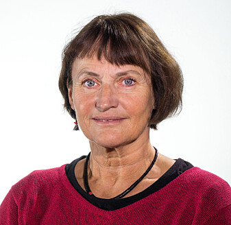 – De frivillige ønsker avklaringer på hva de kan og ikke kan gjøre, sier forsker Aud Moe.