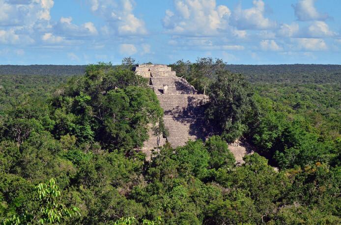 Illustrasjonsbilde av tempelstedet Calakmul i dagens Mexico.