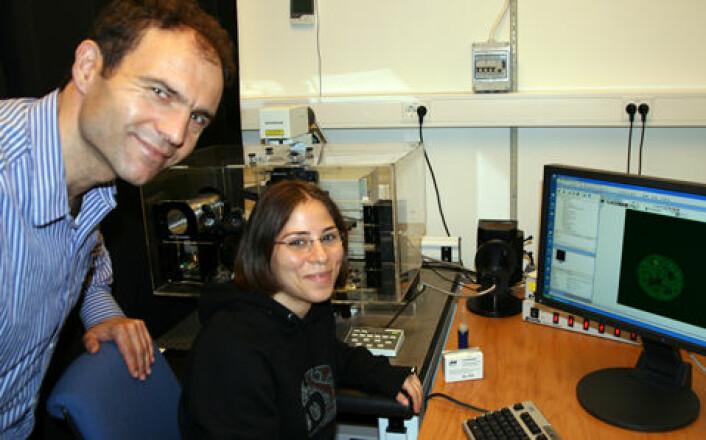 Professor Fahri Saatcioglu sammen med doktorgradsstipendiat Hatice Zeynep Kirli studerer celler for å se hvor raskt deres transkripsjonsfaktor som slår på gener, går av og på DNA-et. (Foto: Norunn K. Torheim)