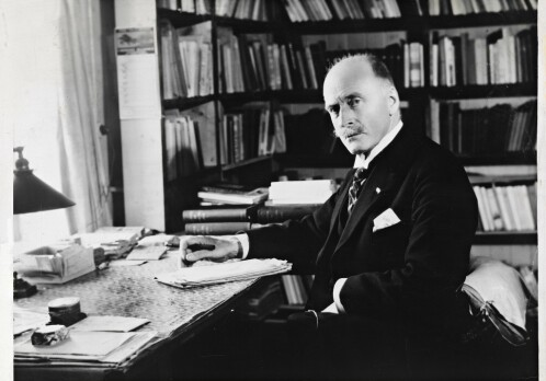 Hamsun's books can be included in the history of gay literature