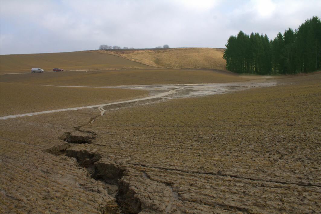 Erosjon betyr at jord og partikler flytter seg, ofte på grunn av regn og vind, til et sted der verken jord eller næring kommer til nytte. Bildet viser erosjon på et jorde i Trøgstad, Indre Østfold.