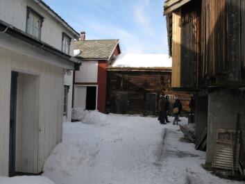 Gardsanlegg i ulike kulturlandskap - her fra Røros sentrum. (Foto: Sebastian Eiter / Skog og landskap)