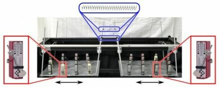 Slik så oppsettet av metronomer ut. Metronomene kom bare i takt på den ene siden. (Foto: Erik Andreas Martens)