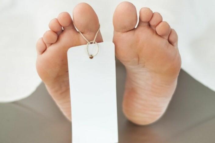 Ein død kropp brukar 15–20 år på å bli forvandla til nokre handfuller med jord. (Foto: Colourbox)