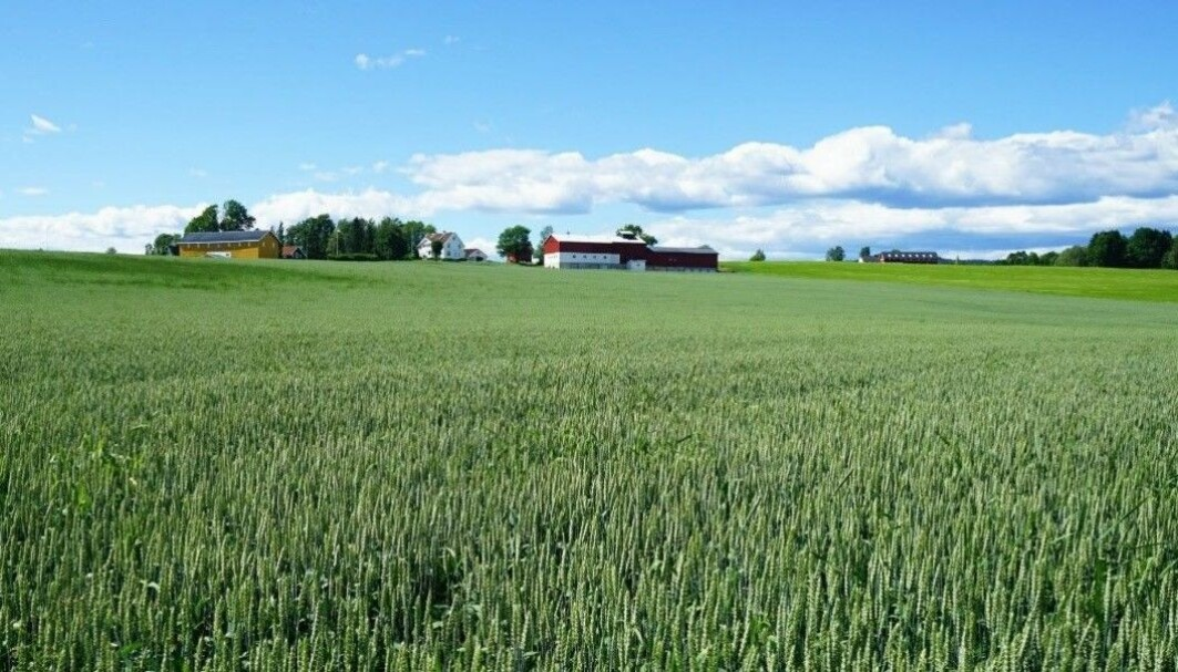 When wastewater plants recover more phosphorous from sewage, Norwegian farmers can benefit from cheaper fertilisers.