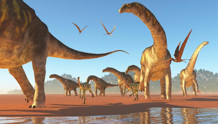 Ingen vet sikkert hvordan langhals-dinosaurene så ut. Men denne datategningen viser hvordan Argentinosaurus kanskje så ut.