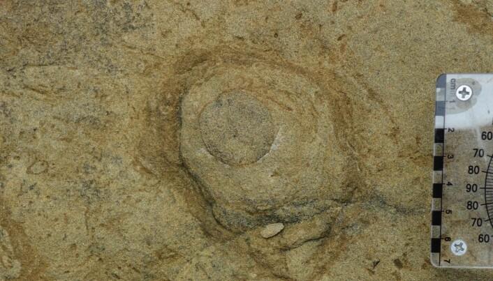 Bildet viser toppen av en hule.