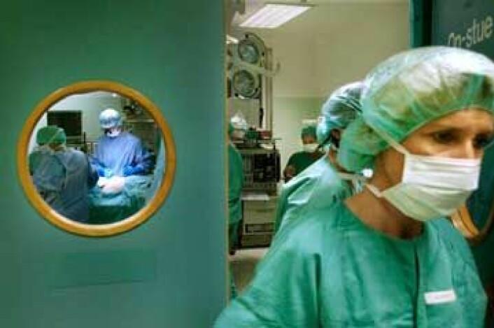 Klinisk utprøving av fettstamceller for å behandle kreftpasienter med kroniske sår etter strålebehandling er startet. Da stilles strenge krav til kvaliteten på stamcellene. (Foto: Sverre Chr. Jarild)