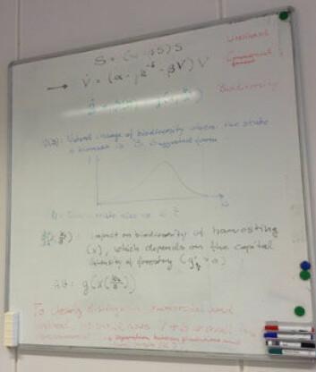Kompliserte formler er det første man ser når man kommer inn på kontoret til økonom Asbjørn Aaheim. (Foto: Nora Heyerdahl)