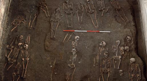 Skjeletter forteller om ulykker, vold og arbeid i middelalderen