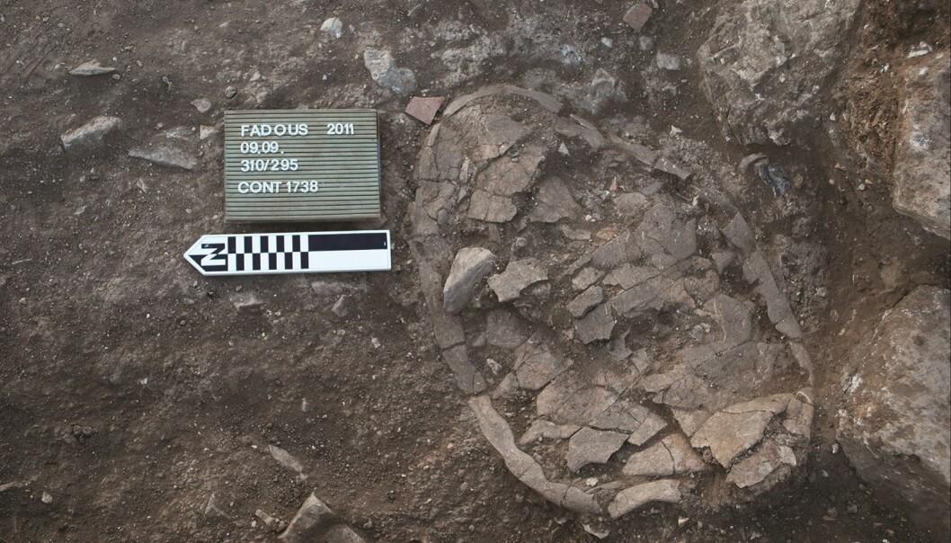 Et skilpaddeskall funnet i en arkeologisk utgravning ved Klazomenai i Hellas.