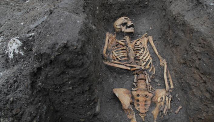 Et av individene fra en utgraving i 2016.